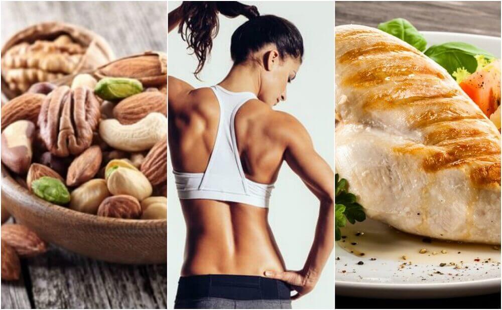 Ernährungsplan für einen optimalen Muskelaufbau