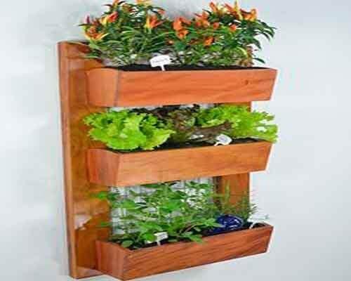 Deko-Ideen - Pflanzen
