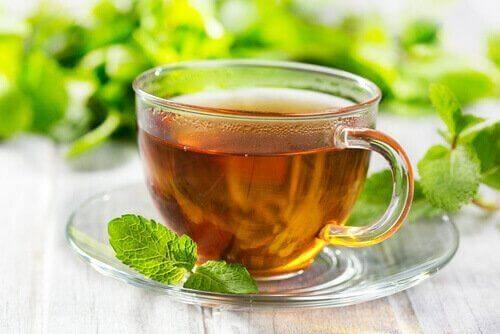 Körper entgiften - Tee