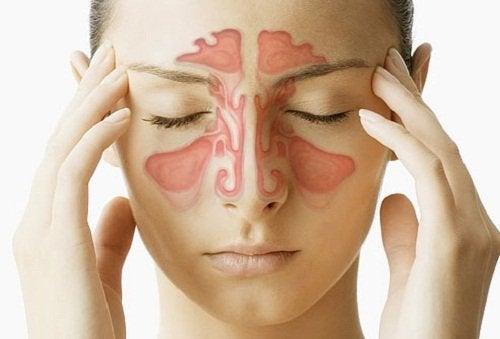 Hausmittel gegen Sinusitis