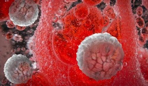 Abbildung von Molekühlen im Körper, um zu zeigen, dass Hormone mittels Bewegung beeinflusst werden.