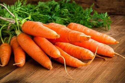 Frisch geerntete Karotten