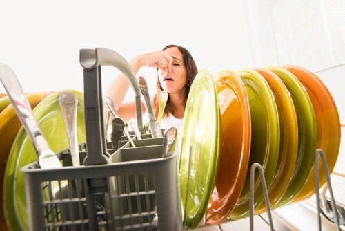 Küchenlappen in Geschirrspüler reinigen