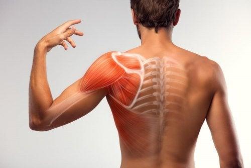 7 Hausmittel gegen Muskelzuckungen
