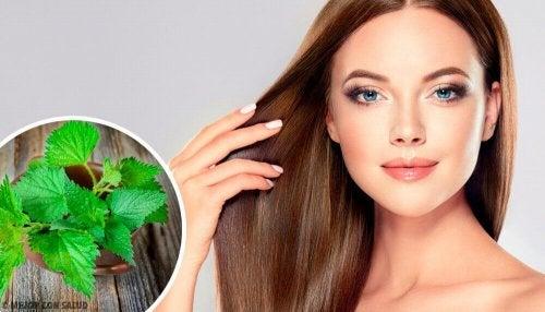 Vorteile der Brennnessel für dein Haar