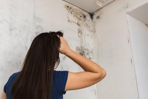 Schimmel im Badezimmer entfernen - Besser Gesund Leben