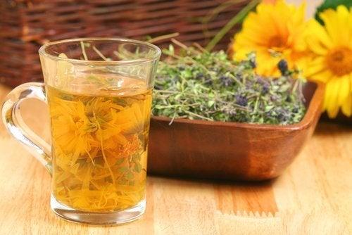 Detox-Tees: 4 Kräuter, die deinen Körper entgiften