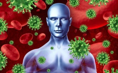 Immunsystem und HIV