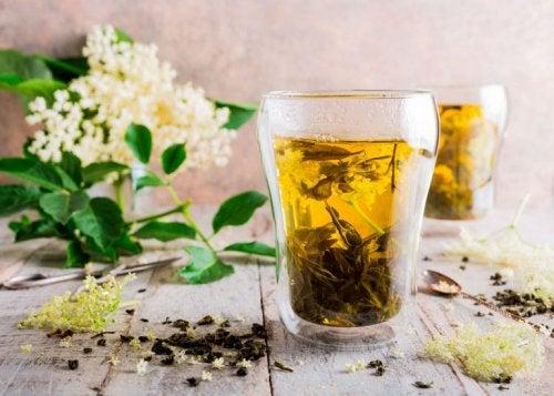 Holunderblüten und Süßholz gegen Allergien