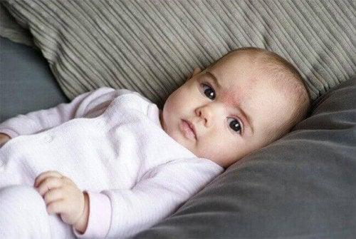 Erstausstattung für Neugeborene - Bodysuit
