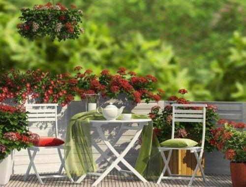 Gestaltung eines Gartens auf der Terrasse mit Stühlen und einem Gartentisch.