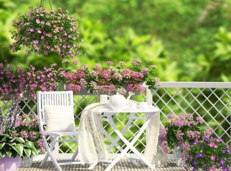 Die einfachsten Ideen für die Gestaltung deines Gartens