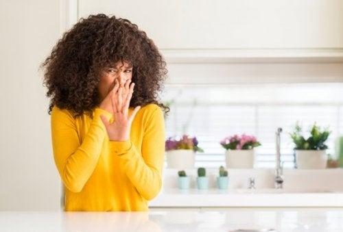 Wie du 4 natürliche Lufterfrischer für die Küche herstellst