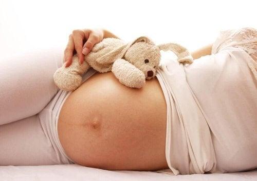 Schwangerschaftsmonat - sieben