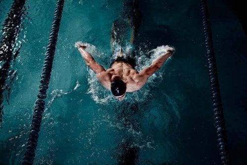 Schwimmen trainiert viele Muskelgruppen gleichzeitig