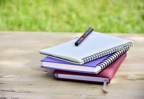 alte Notizbücher - neue Bücher