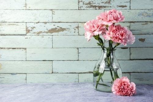 Wie man Blumenvasen richtig reinigt