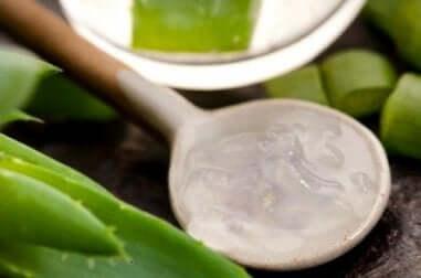 Natürliche Helfer gegen Haarausfall: Aloe vera
