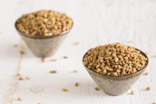 Bockshornklee in zwei Schalen, um damit Tee zuzubereiten.