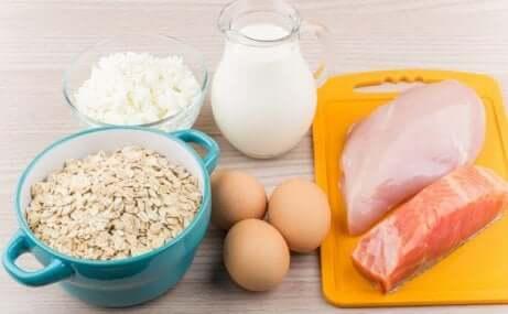 Auswahl an Proteinen