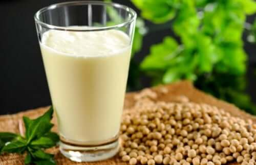 Hanfmilch: Alles, was du wissen musst