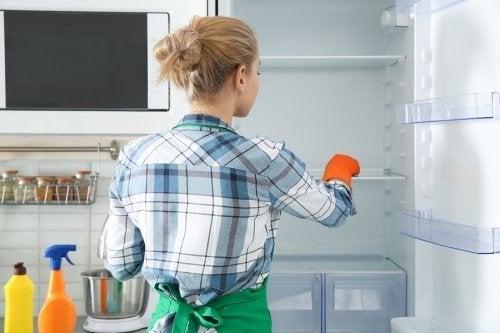 """""""Öko""""-Methoden zur Desinfektion und Reinigung des Kühlschranks"""
