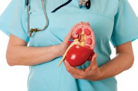 Hyperchlorämische Nierenazidose: Behandlung