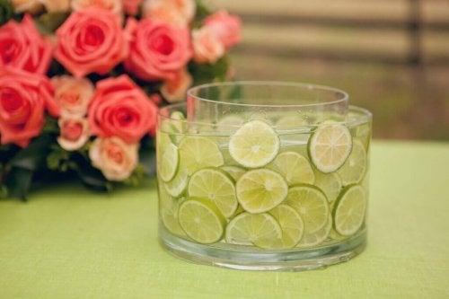 Blumenvase mit Zitrusfrüchten