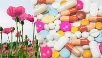 Wann werden Opioide verwendet?