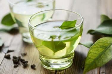Grüner Tee gegen Verdauungsstörungen