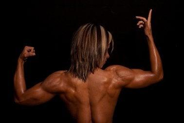 Oberflächliche oder sekundäre Rückenmuskulatur
