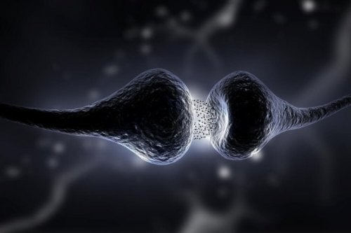 Was ist Myasthenia gravis?
