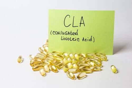 Konjugierte Linolsäuren (CLA) und ihre Wirkung