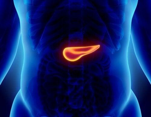 Was ist eine akute Pankreatitis?