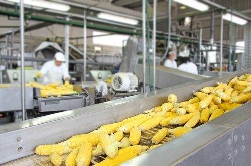 Einfluss technologischer Verfahren auf den Nährwert von Lebensmitteln