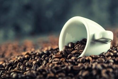 Kaffee verbessert die mentale Leistung