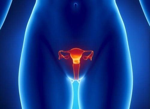 primäre Ovarialinsuffizienz