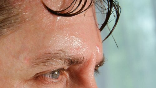 Schwitzen als Schutzmechanismus bei großer Hitze