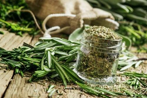 Tees gegen Anämie: Rosmarintee