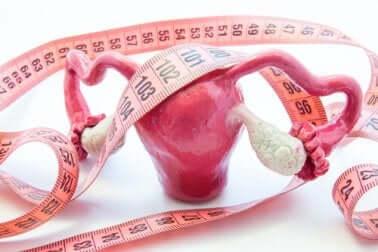 Ursachen für Gebärmutterpolypen