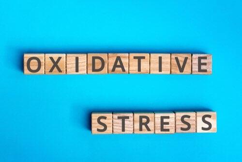 Was ist oxidativer Stress?