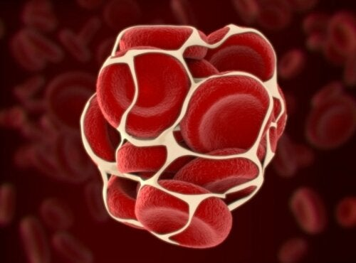 Welche Krankheiten stehen im Zusammenhang mit einer Störung der Blutgerinnung?