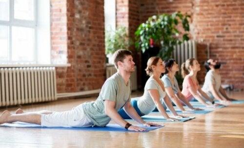 Pilates, Yoga oder Tai-Chi gegen Kreuzschmerzen