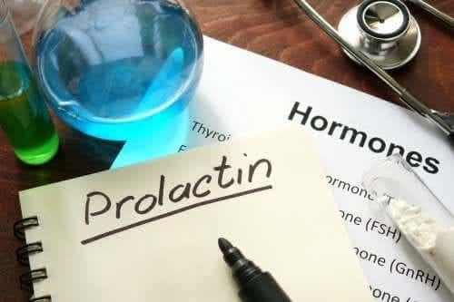 Was ist Prolaktin und wie funktioniert dieses Hormon?