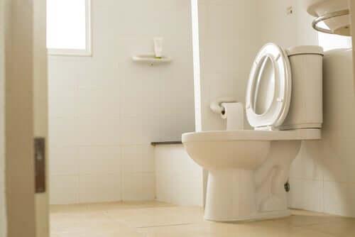 Sind Krankheitserreger auf öffentlichen Toiletten gefährlich?