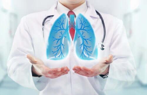 Wie wirkt die Atmung auf das Gehirn?