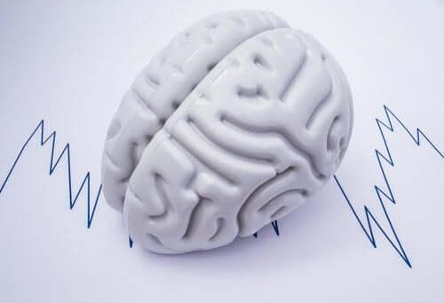 Wissenswertes über epileptische Anfallsarten