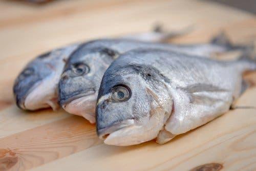 Ist Quecksilber in Fisch gefährlich?