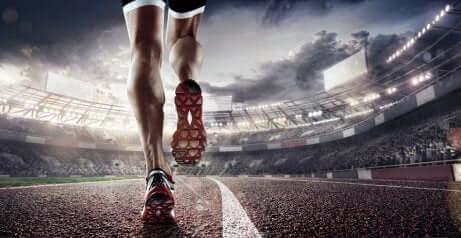Sehnen und Bänder der Kniegelenke stärken
