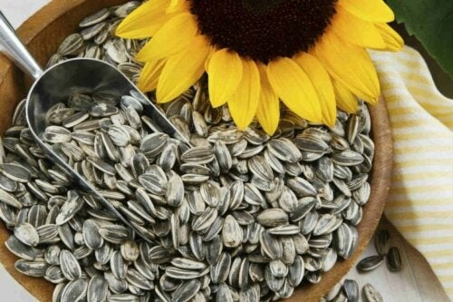 Sonnenblumenkerne mit Biotin